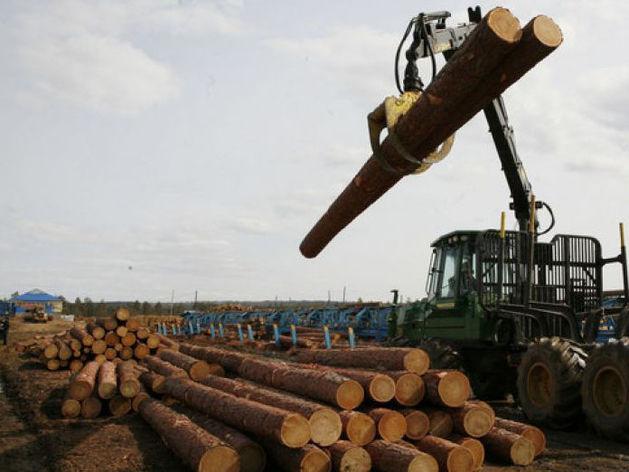 С предприятия в Красноярском крае долг получили только после ареста его продукции