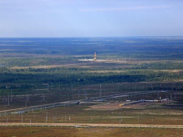 «Роснефть» готовится передать индийским компаниям половину доли «Ванкорнефти»
