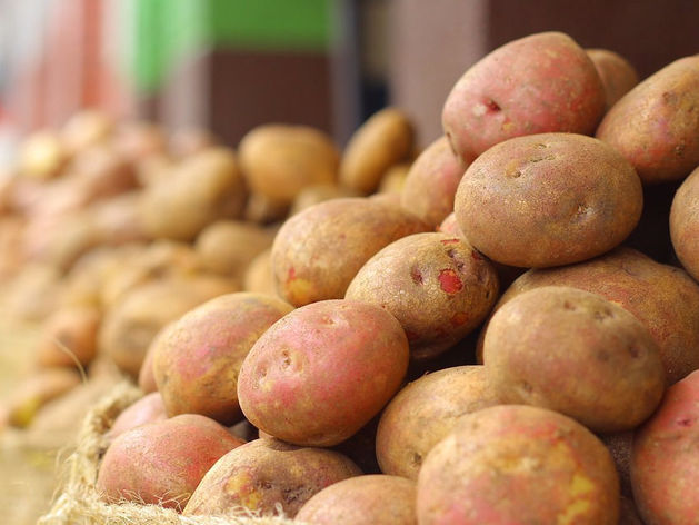 Красноярский край занял четвертое место в Сибири по производству сельхозпродукции