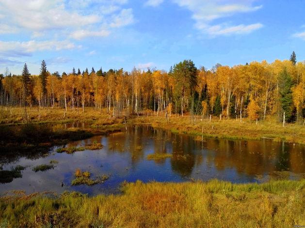 В Красноярском крае увеличат плату за выбросы в атмосферу