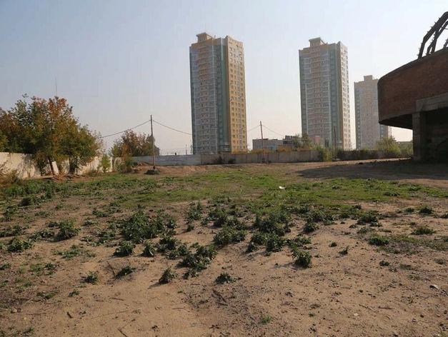 В черте Красноярска дорожает земля