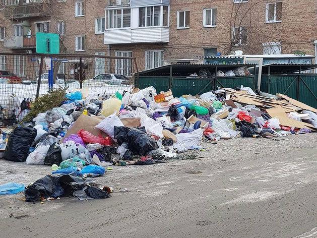 Мусорные баки на ул. Тимирязева