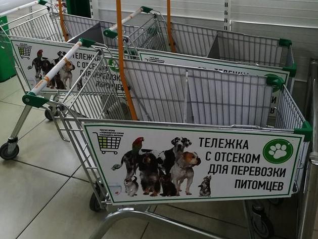 Красноярские магазины открыли двери для покупателей с собаками