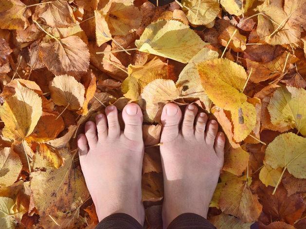 Суббота в Красноярске — самый теплый выходной день ноября