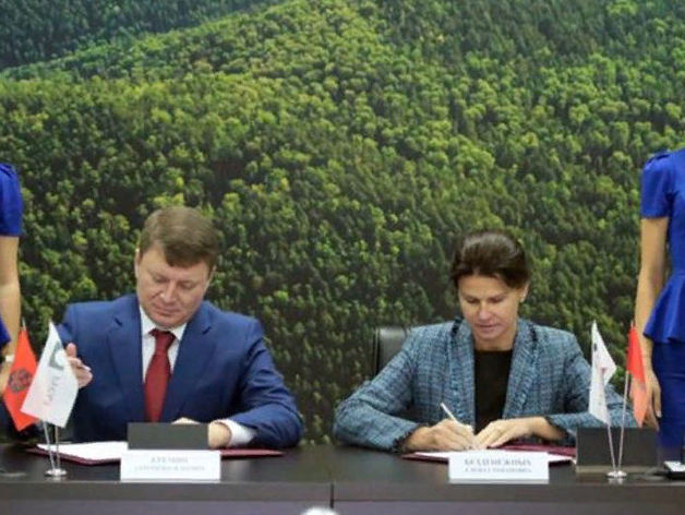 Центральный парк в Красноярске будет реконструирован