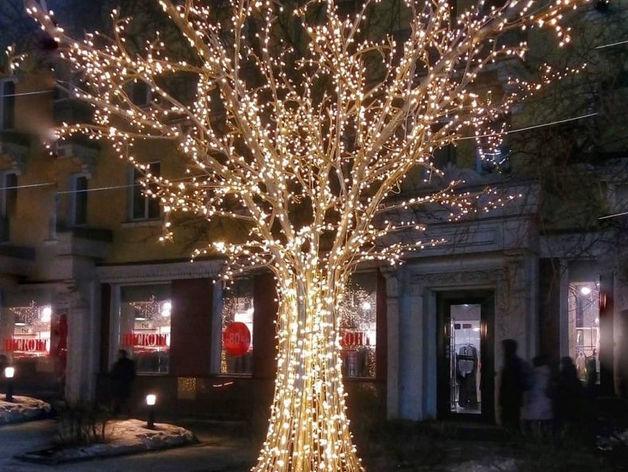 В Красноярск вернутся светящиеся деревья
