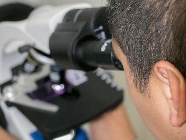 Лаборатория СИТИЛАБ в Красноярске начала тестирование на коронавирус