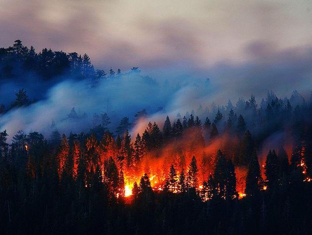В Красноярском крае начинается сезон лесных пожаров
