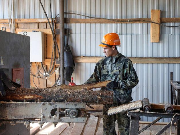 Предпринимателей из районов Красноярского края поддержат бюджетными деньгами