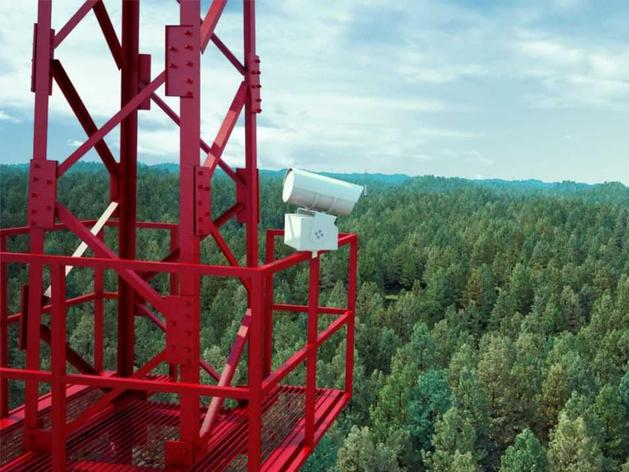 «Здоровье» леса под присмотром «всевидящего ока» технологий