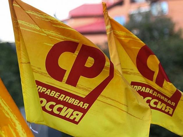 Красноярские справедливороссы и «Патриоты России» ждут решений Москвы