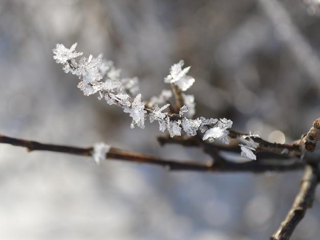 Снова заморозки: на выходных в Красноярске похолодает