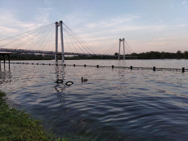 Затопленная Енисеем красноярская набережная в районе вантового моста. 6 июня 2021 года