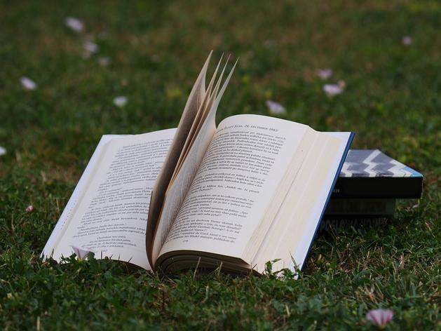 Фэнтези и саморазвитие: на какие книги резко вырос спрос у красноярцев